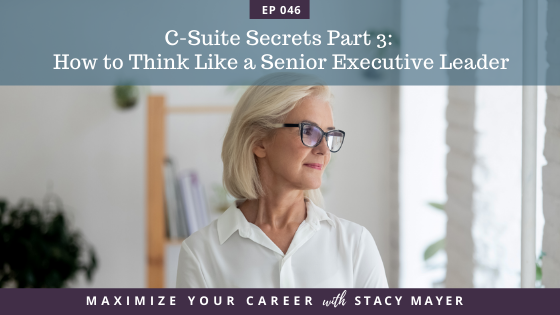 Maximize Your Career with Stacy Mayer, C-Suite Secrets, C-Suite Secrets Part 3, CEO Mindset, episode art